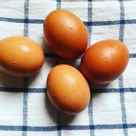 Ekat omat munat
